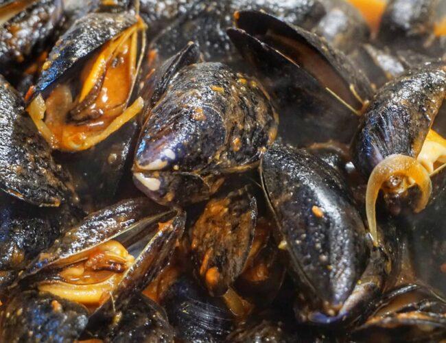 Cozze del marinaio: salsa di pomodoro e cipolla rossa di Tropea